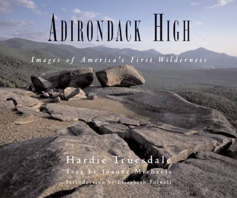 Book cover for Adirondack High by Joanne Michaels