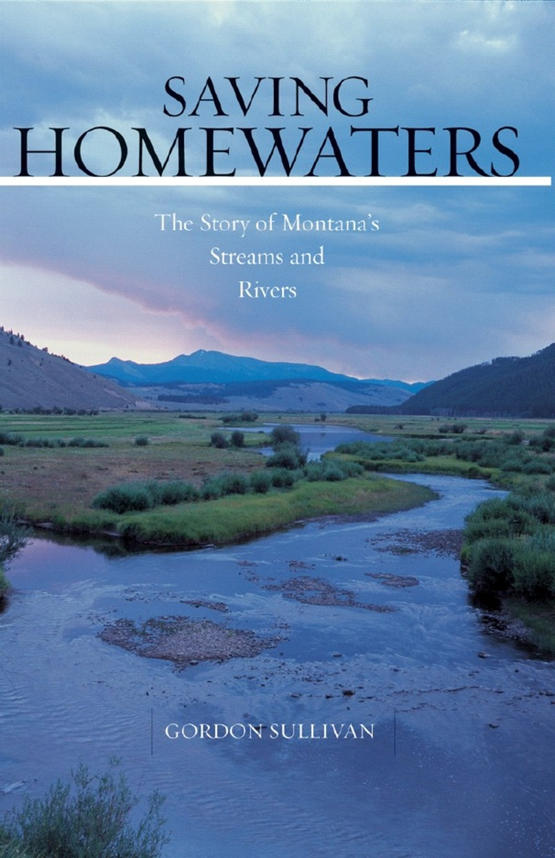 Book cover for Saving Homewaters by Gordon Sullivan