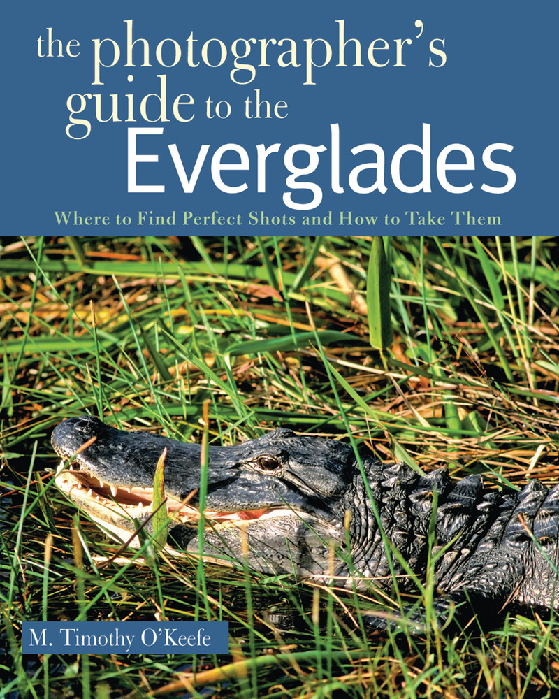 Book cover for The Photographer's Guide to the Everglades by M. Timothy O'Keefe