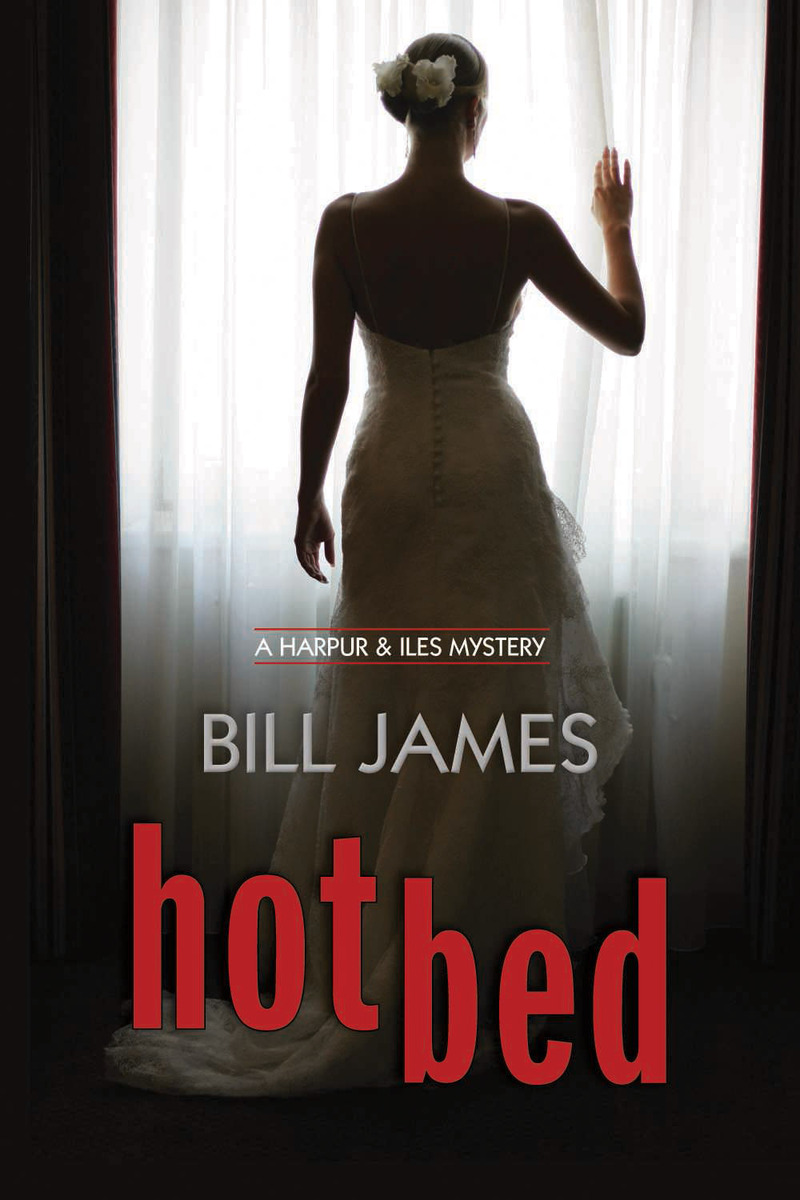 Book cover for Hotbed by Bill James