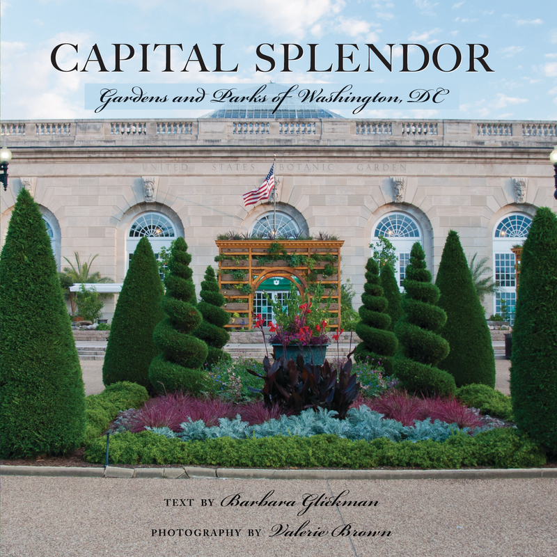 Book cover for Capital Splendor by Valerie Brown
