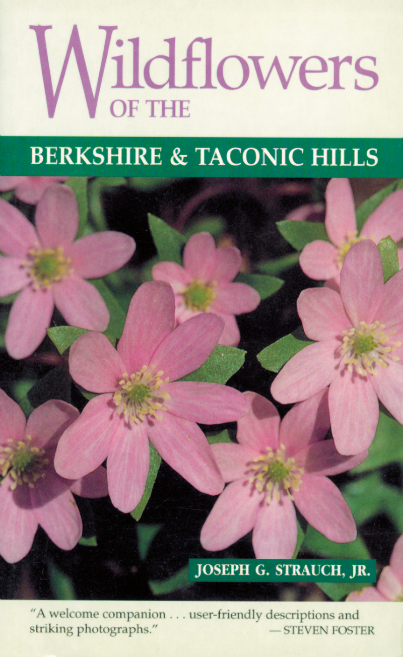 Book cover for Wildflowers of the Berkshire and Taconic Hills by Joseph G. Strauch