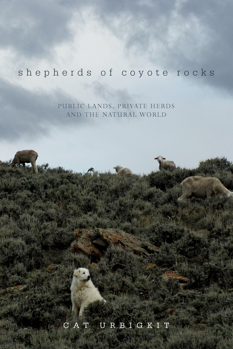 Book cover for Shepherds of Coyote Rocks by Cat Urbigkit
