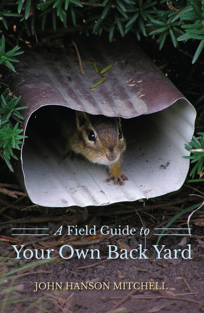 Book cover for A Field Guide to Your Own Back Yard by John Hanson Mitchell