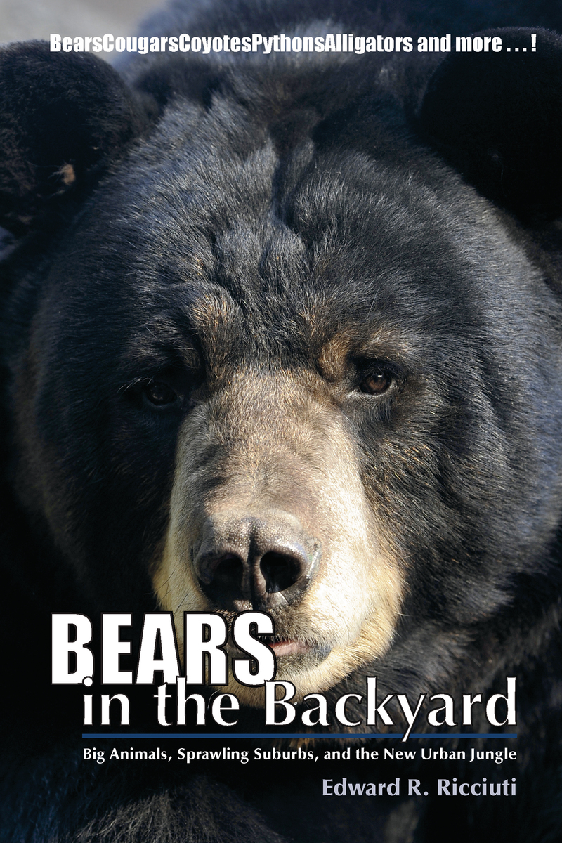 Book cover for Bears in the Backyard by Edward R. Ricciuti