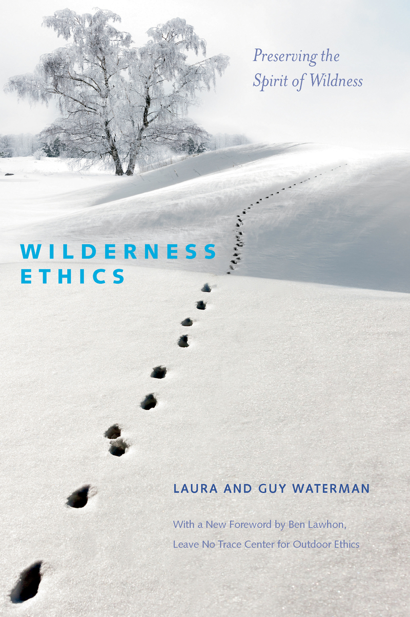 Book cover for Wilderness Ethics by Guy Waterman
