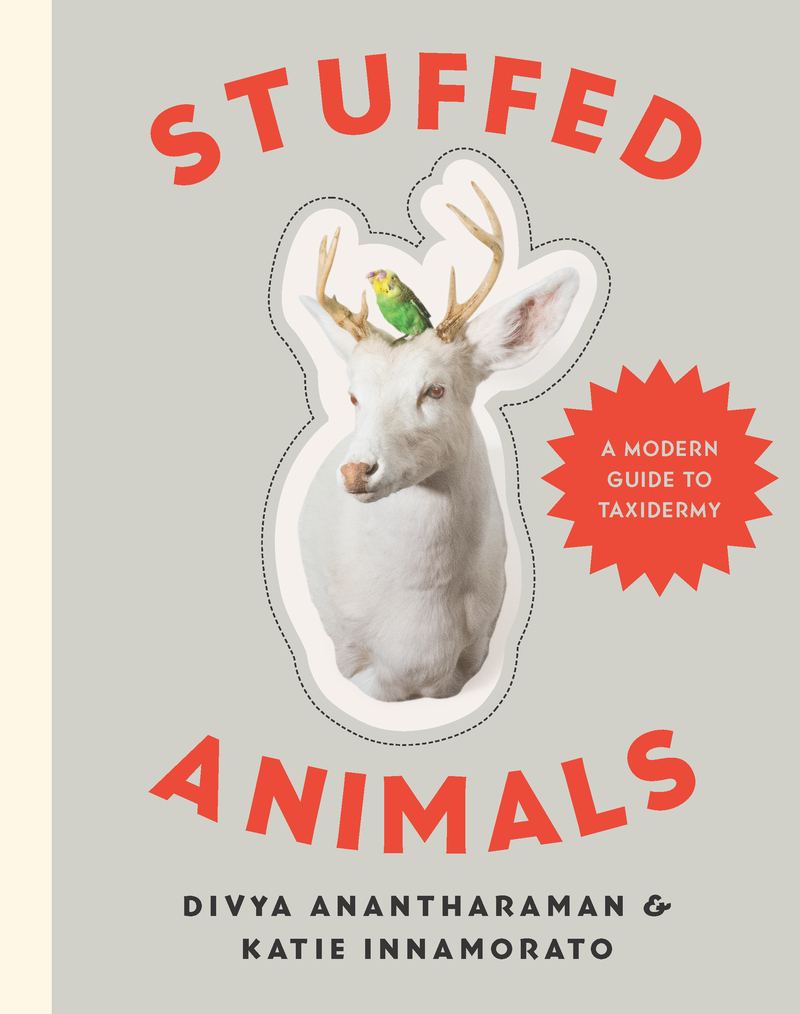 Book cover for Stuffed Animals by Divya Anantharaman