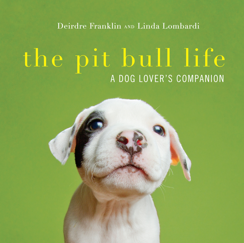 Book cover for The Pit Bull Life by Deirdre Franklin