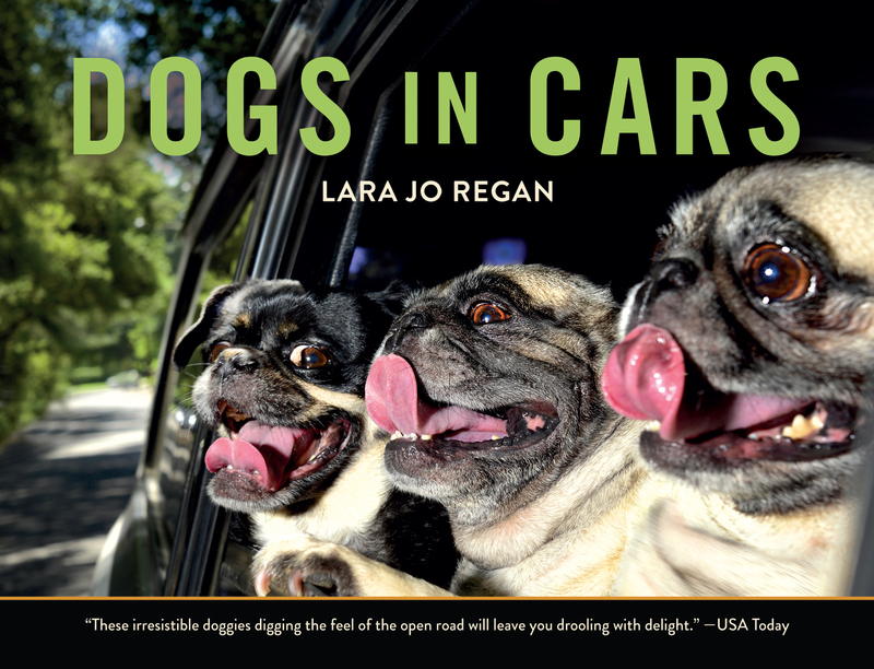 Book cover for Dogs in Cars by Lara Jo Regan