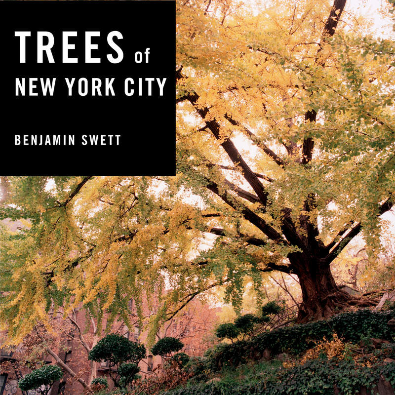 Book cover for Trees of New York City by Benjamin Swett