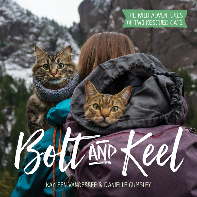 Book cover for Bolt and Keel by Kayleen VanderRee