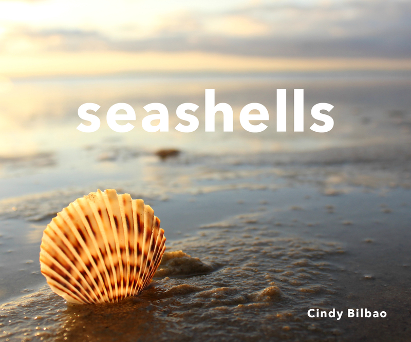 Book cover for Seashells by Cindy Bilbao