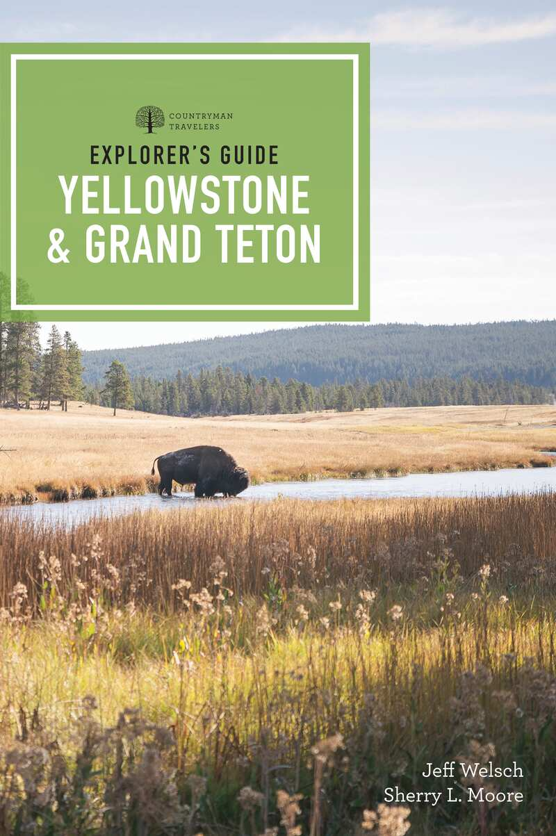 Book cover for Explorer's Guide Yellowstone & Grand Teton by Sherry L. Moore