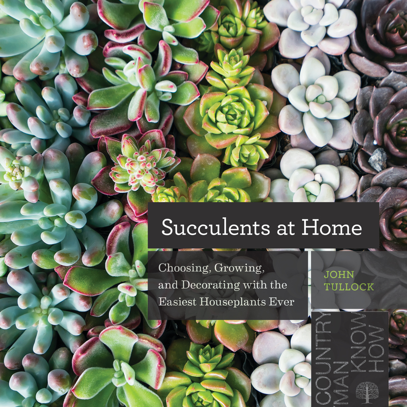 Book cover for Succulents at Home by John Tullock