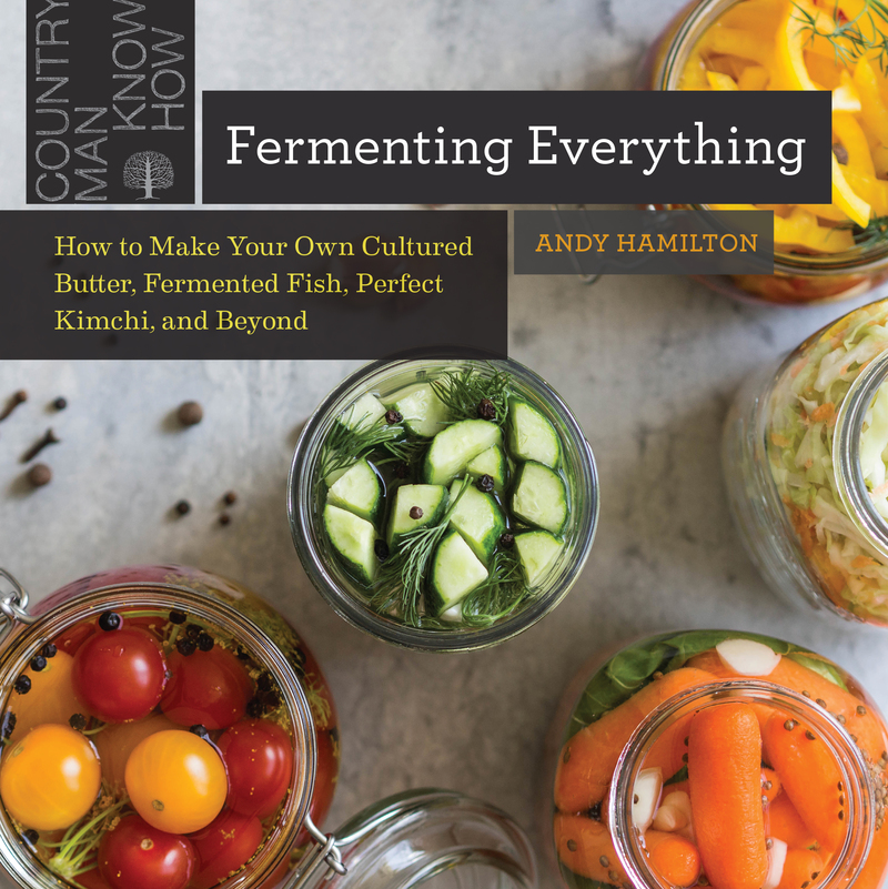 Book cover for Fermenting Everything by Andy Hamilton