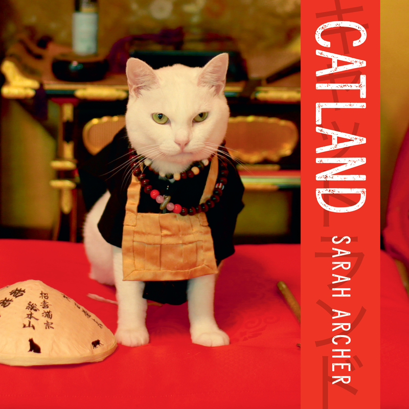 Book cover for Catland by Sarah Archer