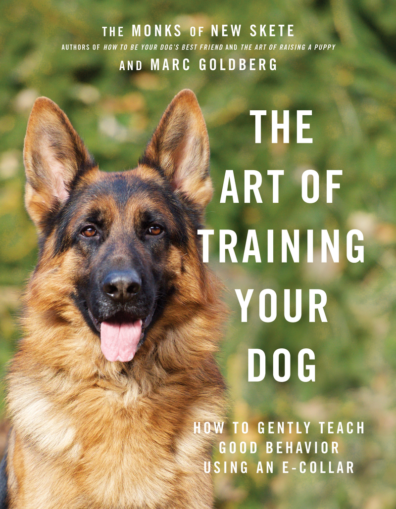 Book cover for The Art of Training Your Dog by